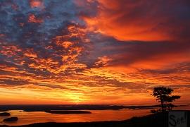 acadia_sunrise