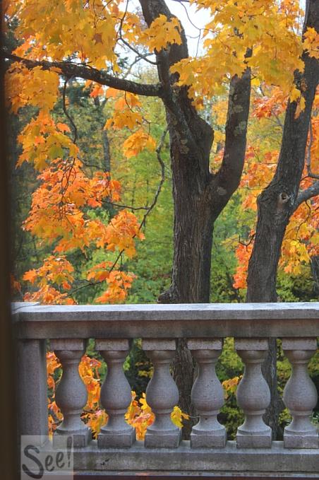minnesota-fall-colors